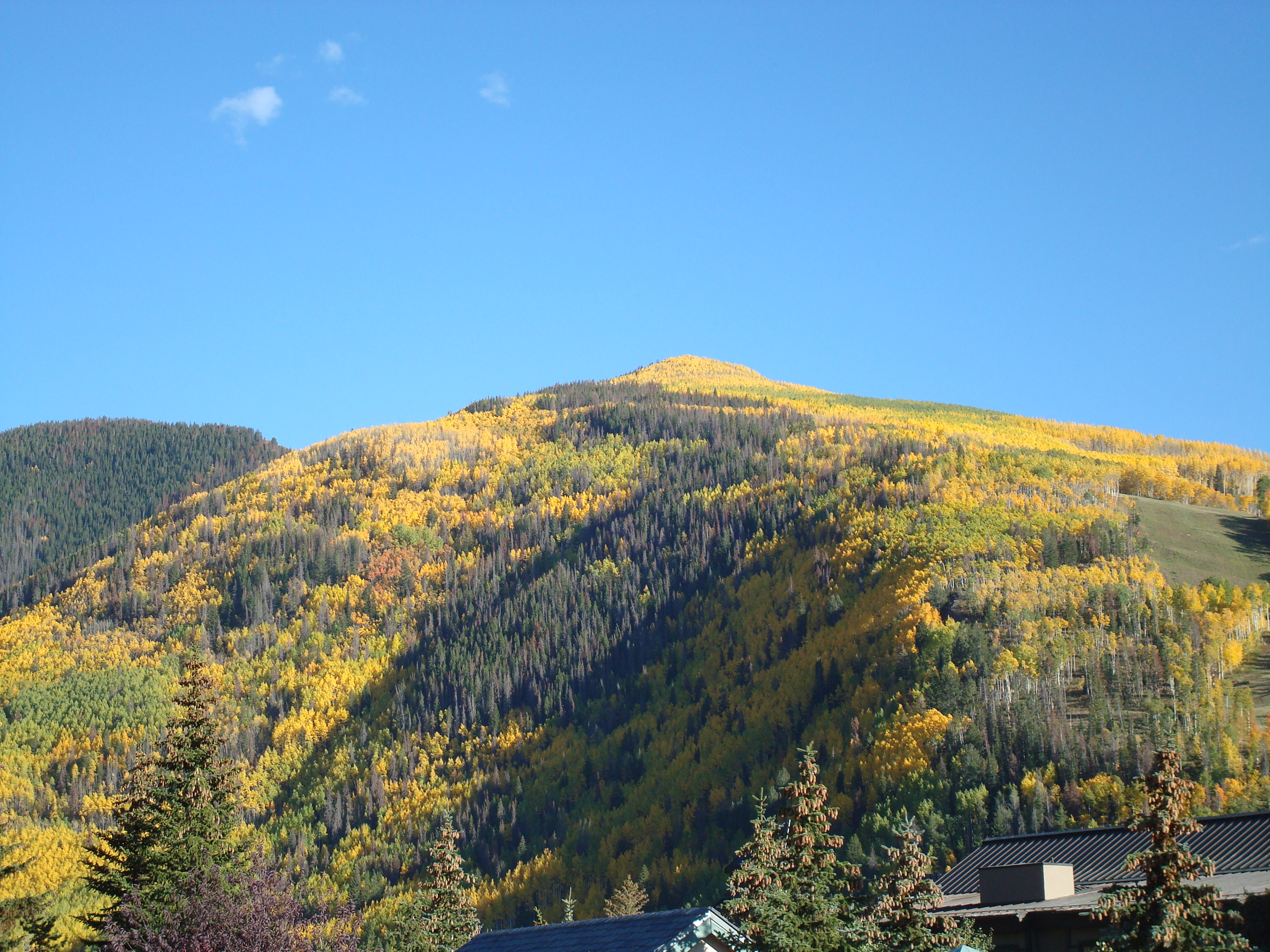 Golden Peak in Vail