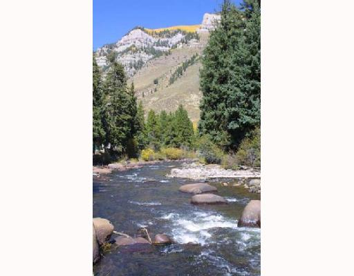 Trout Fishing near Vail, Colorado