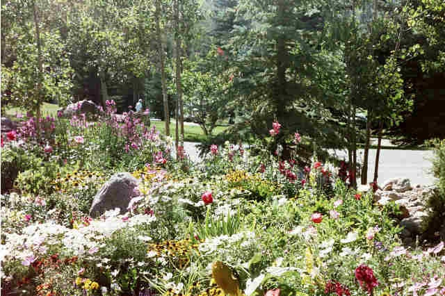 betty ford alpine gardens vail property search search vail valley. Cars Review. Best American Auto & Cars Review