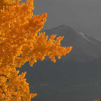 Fall Colors in the Colorado Rocky Mountains with a fresh dusting of snow on the mountain